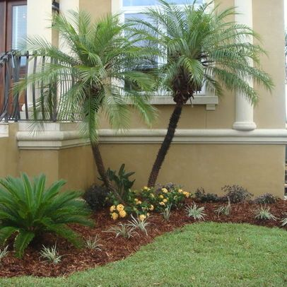 Tropical landscape design pictures remodel decor and Florida landscape design ideas