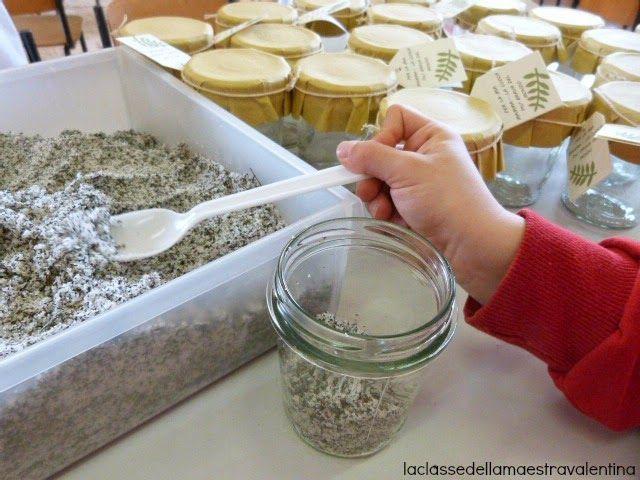 pots de sel arromatisés pour la fête des mères (ou autre) ! sel, thym, romarin, sauge.