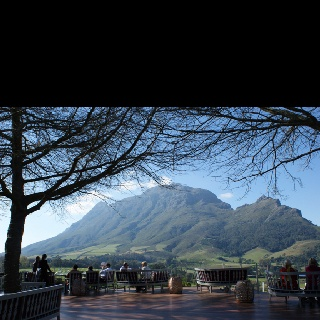 South African wine lands