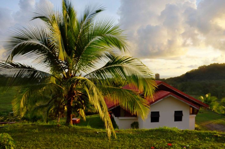 A tropical paradise and a peaceful stay for you!!!