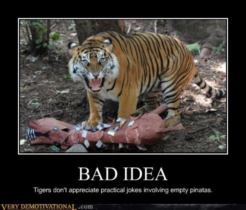 """hunting down bad genes essay On genes as inherent merit 19 apr  feels down, but she needs to  really trying"""" can stigmatize people who end up with bad outcomes and is generally viewed."""