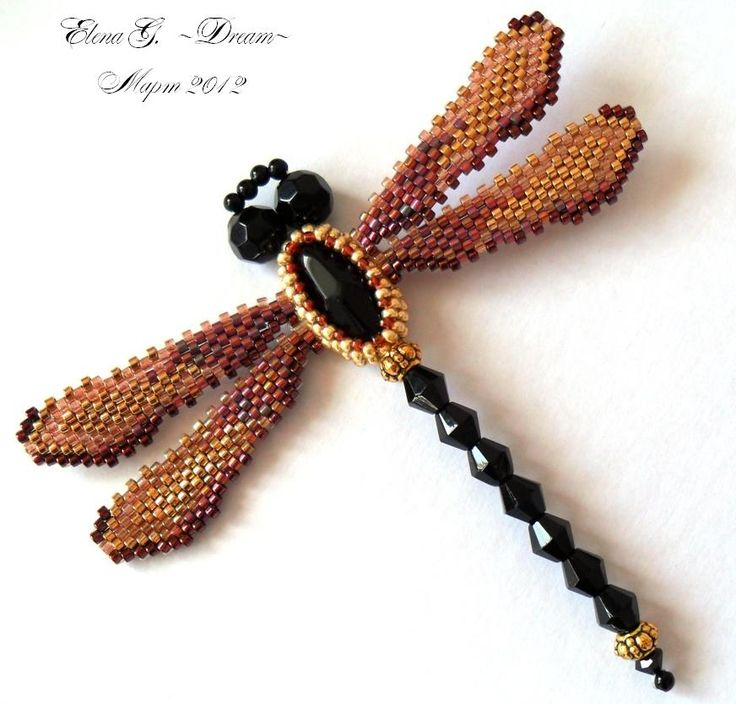 Golden Dragonfly 1