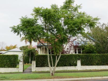30 Stevenson Street Taree NSW 2430 - House for Sale #125520402 - realestate.com.au
