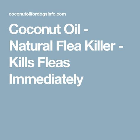 Coconut Oil - Natural Flea Killer - Kills Fleas Immediately