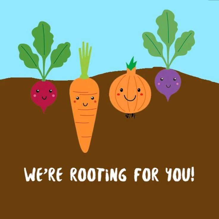 Experts recommend you should have 5-9 servings of fruit and vegetables per day. We're rooting for you!