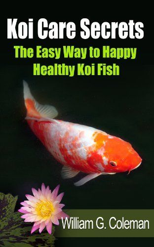 140 best fish and fish tanks images on pinterest fish for Koi fish care