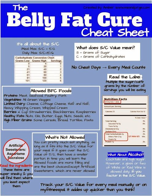 Belly Fat Cure Diet Cheat Sheet - Me and Jorge