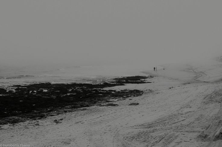 Bruma en la playa.
