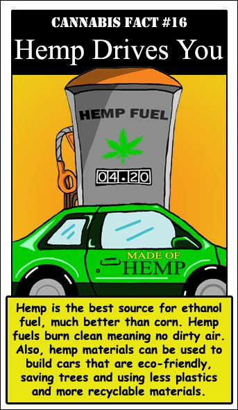 Hemp Drives You... HEMP FUEL PEOPLE!!! THEY USED TO MAKE IT, READ ABOUT HENRY FORD & He Used It In The Making Of The CAR!!
