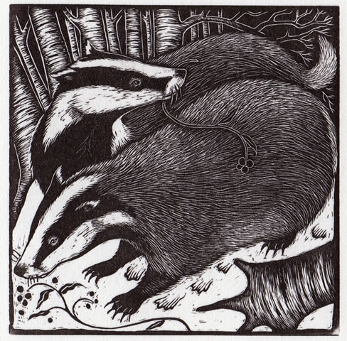 Rosamund Fowler. Badgers. (wood engraving)
