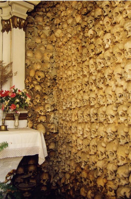Skull wall I think I need to create a wall of skulls and bones in my hubby's mancave! lol            Skull Wall