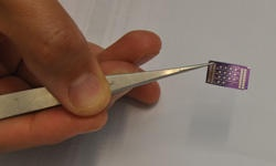 The nanosensor array was developed by Nosang Myung. Image: UC Riverside