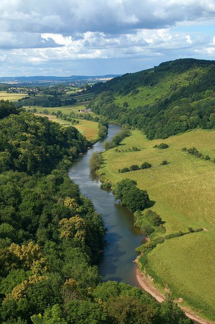 View from Symonds Yat Rock, Herefordshire, England. …