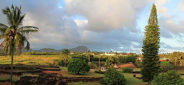 A View Of Prince Kuhio Park by Bonnie Follett - Kauai Hawaii