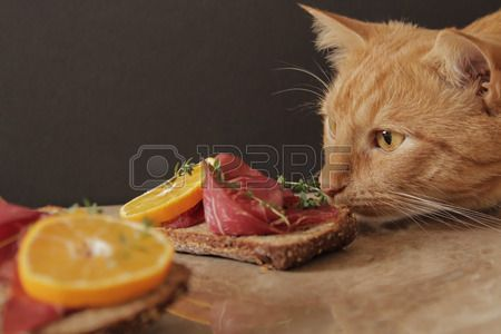 sandwich with meat and mandarin Temyan