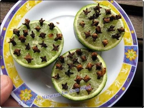 como repeler moscas y moscas de frutas. limon y clavito