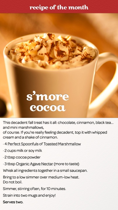 S'more Cocoa: The decadent fall treat that has it all - chocolate, cinnamon, black tea... and of course, mini marshmallows.