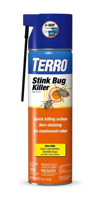 TERRO Stink Bug Killer | Splash Magazines |  Learn more about this product at http://terro.com/products/stink-bug   #TERRO #stinkbug