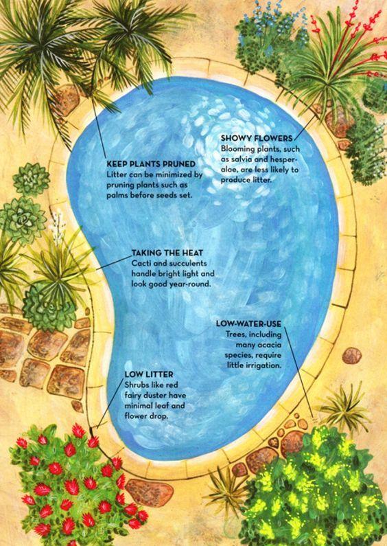 Simple Pool Landscaping Ideas