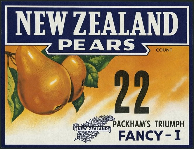 New Zealand pears: Packham's Triumph Fancy - I [circa 1940-1960]