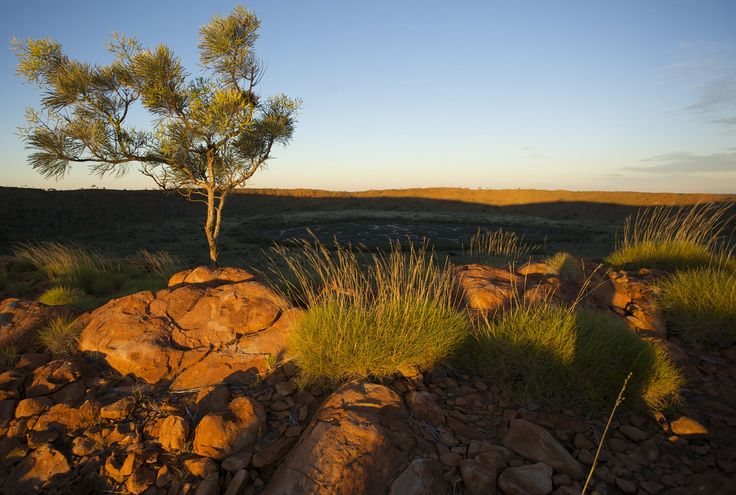 Heat, Wolfe Creek Meteorite Crater, Sunset, Tanami Desert, NT