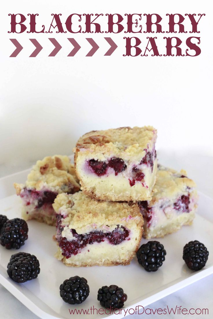 Blackberry Bars by The DiaryofDavesWife