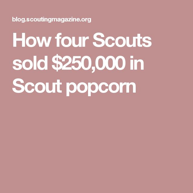 How four Scouts sold $250,000 in Scout popcorn