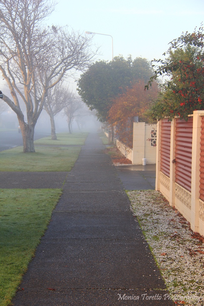 Mystical fog covered Invercargill recently turning the streets into a scene fresh out of a fairy tale. Bamborough Street.  June 2013.