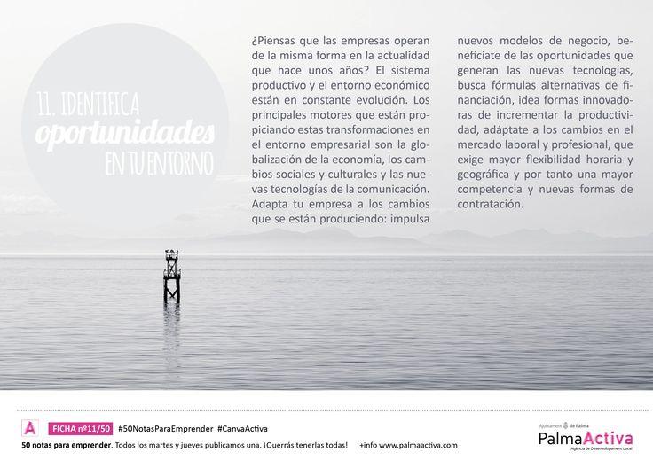 11/50 de las #50NotasParaEmprender. Identifica las oportunidades de tu entorno #CanvaActiva