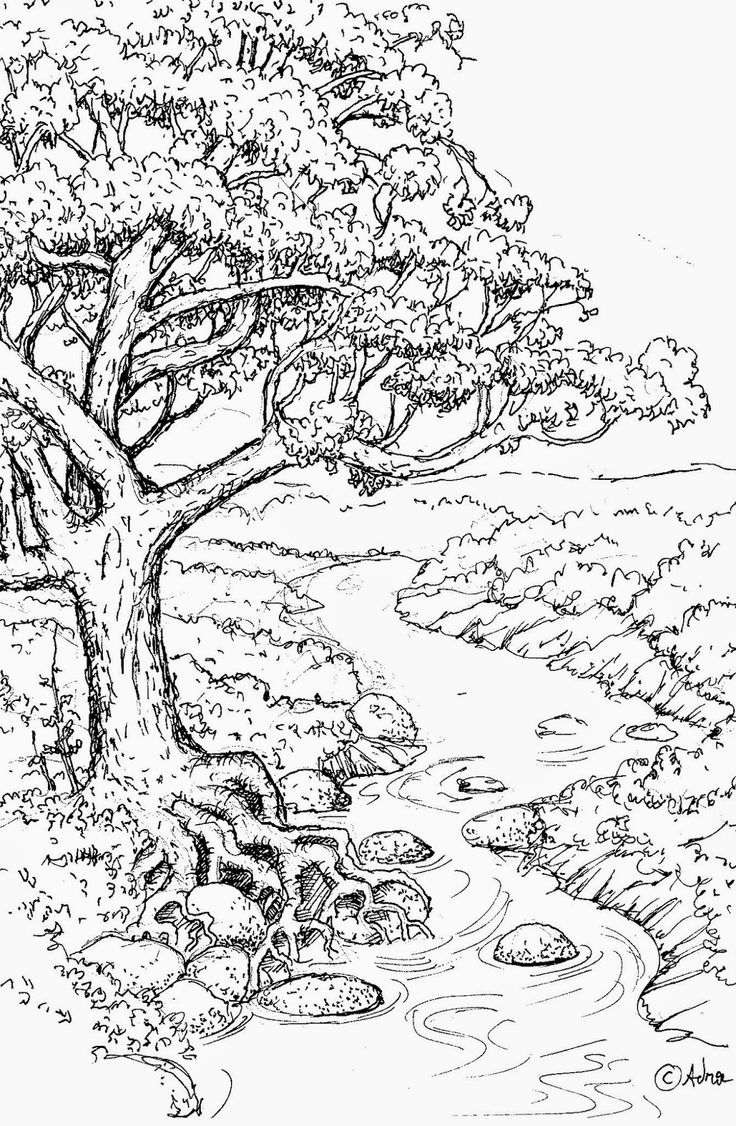 14601 best colouring pages for adults images on pinterest for Trust god coloring page