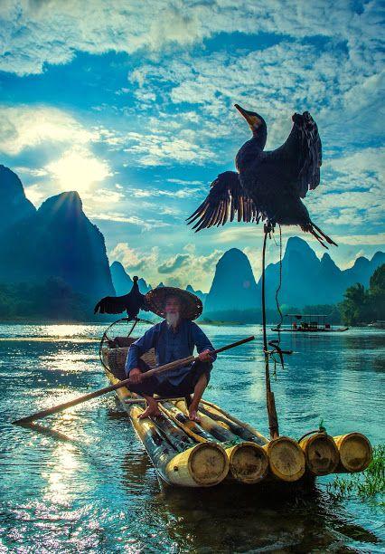 Fisherman & cormorant, guilin, china by Hamni Juni