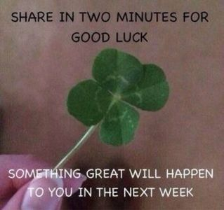I know it's not gonna happen but just incase... | Funny blah | Pinterest | Good Luck, Why Not and Clovers