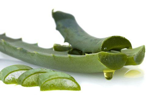 Aloe Vera Yağı