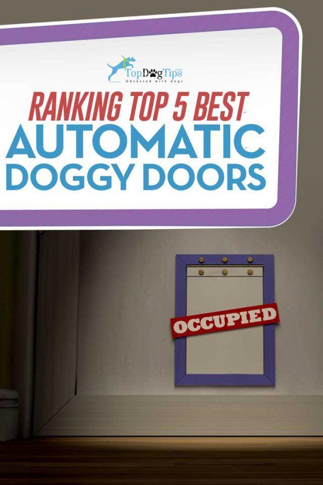 55 best Best Dog Doors images on Pinterest   Pet door, Sliding doors ...