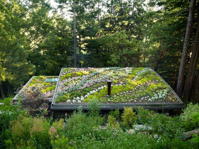If I build my own house someday, I want it to have sky lights, solar panels, a green roof and as much self-sufficiency as possible ~contemporary garage and shed by Feldman Architecture, Inc.