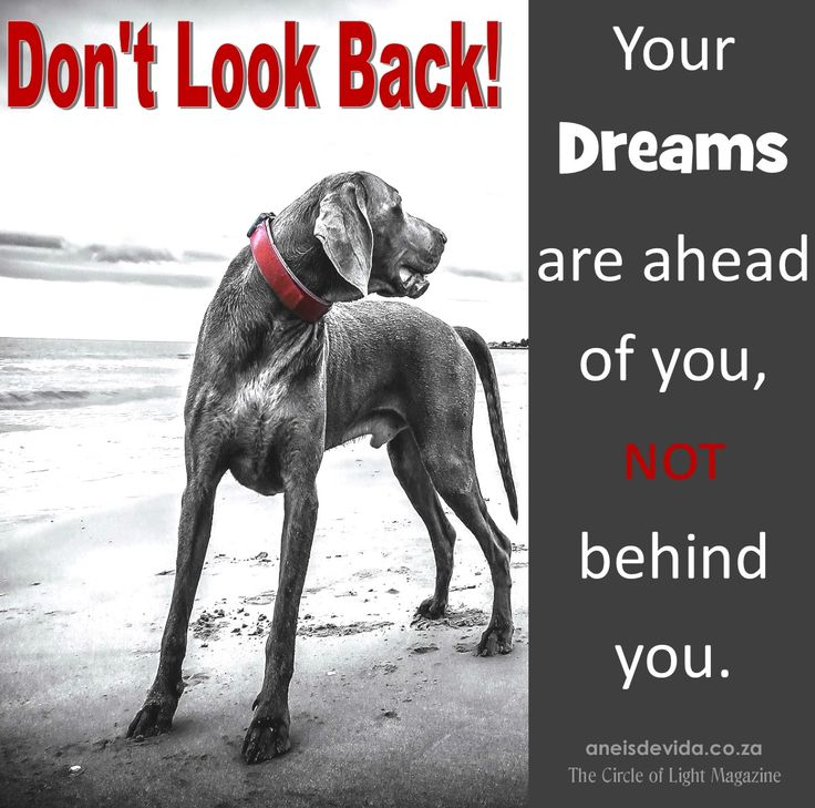 The past is just that - The Past.  Look forward to the Future and make your Dreams come true.  http://aneisdevida.co.za