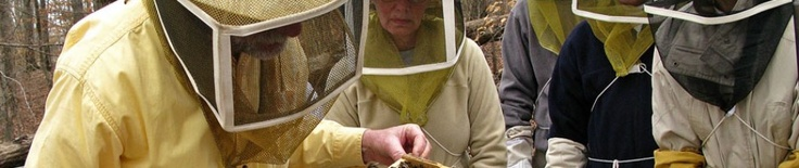 Booger Hill Bee Company beekeeping classes start in December