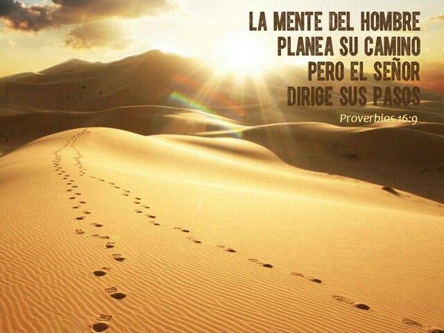 La mente del hombre planea su camino pero el señor dirige sus pasos.  Proverbios 16:9