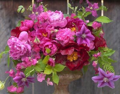 florist Florali (CA)