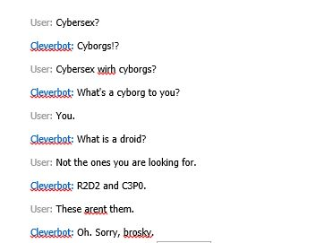 Heard people trying to cybersex cleverbot, this is my attempt...
