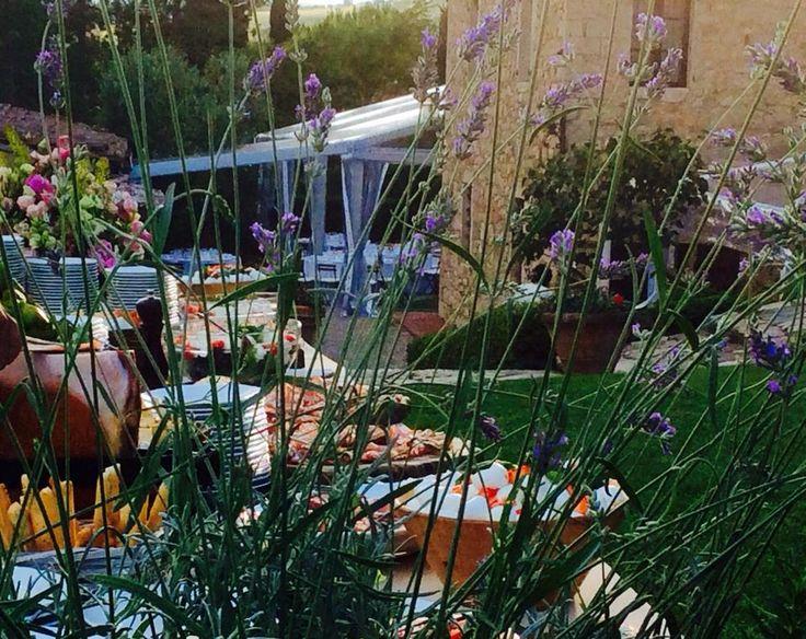 Prosciutto and Mozzarella Corner with fresh lavender #Tuscanhills. All Rights Reserved GUIDI LENCI www.guidilenci.com