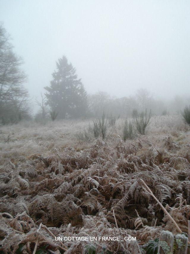 Le Chemin de Confolens en hiver 1