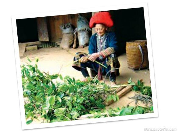 village of Ta Phin  family stay with Red Dao Hilltribe people