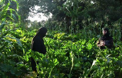 ΕΛΛΗΝΙΚΗ ΔΡΑΣΗ: Ένα οικολογικό και πολυεθνικό μοναστήρι που εκθέτε...