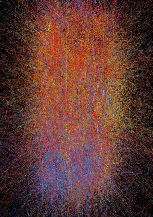 This representation shows the connectivity of the 10,000 neurons and 30 million connections that make up a single neocortical column. Different colors correspond to different levels of electrical activity.