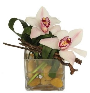 Kudos :: Martins, the Flower People A pretty token of your esteem. Two choice blooms of cymbidium orchid in a zen-like arrangement.   $35.00