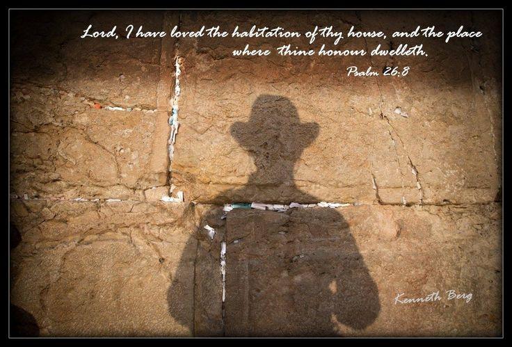 Psalm 26:8