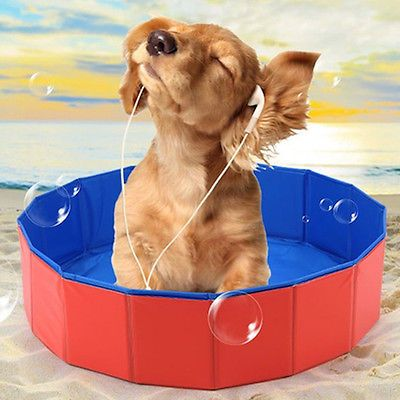 11 Ways To Clean Your Dirty Dog. Portable Dog Bath Tub ...