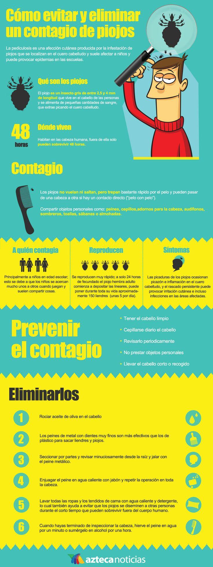 Cómo eliminar y evitar un contagio de piojos