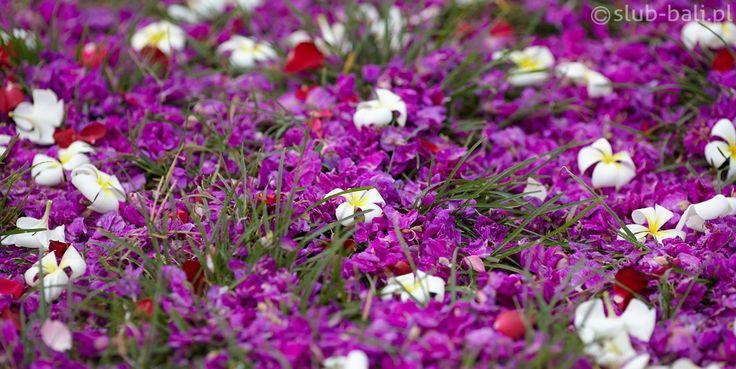 Dywan kwiatów - slub-bali.pl